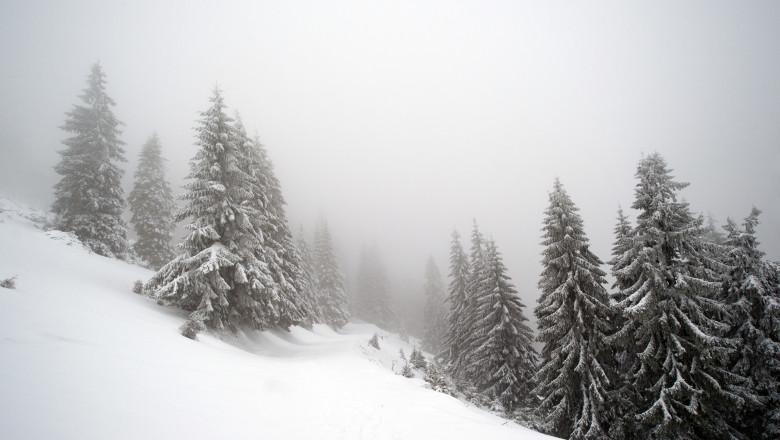 ANM: Informare meteo de ninsoare și viscol la munte