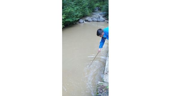Calitatea apei brute din sursa ce alimentează cartierul Băița afectată de exploatările de masă lemnoasă