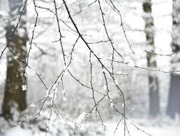 Primul weekend cu zăpadă: ninsori și temperaturi de -10 grade