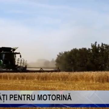 VIDEO |  PLĂȚI PENTRU MOTORINĂ