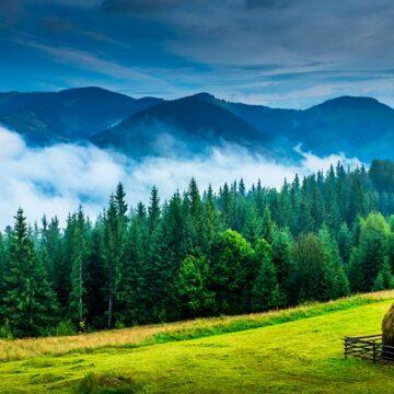 VIDEO   Maramureșul și Bucovina, înscrise pe lista New York Times de destinații de vacanță în vreme de pandemie