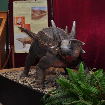 """Muzeul Județean de Mineralogie """"Victor Gorduza"""" Baia Mare prelungește expoziția temporară """"Ultimii dinozauri din Transilvania"""""""