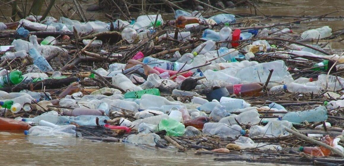 VIDEO | Parcuri inundate de ape și pet-uri, la Sighetu Marmației