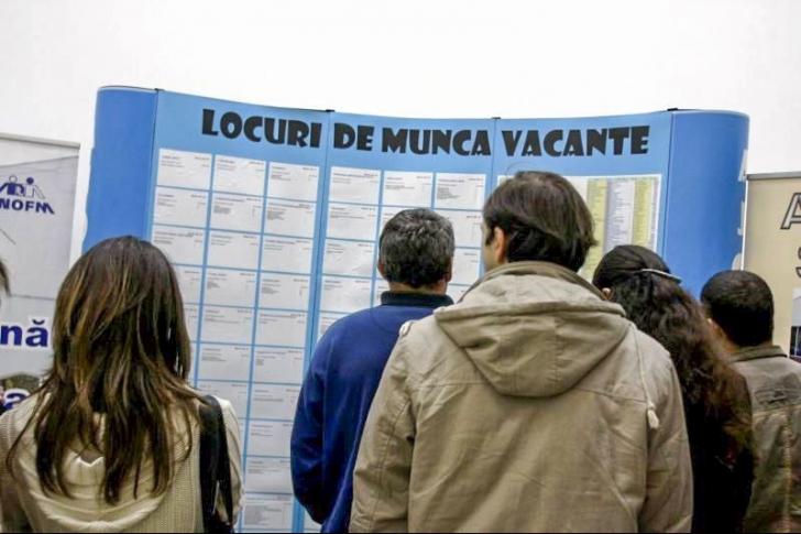 Cât de mult te ajută școala să-ți găsești un loc de muncă? Ce răspund tinerii
