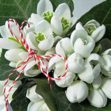 Florile și mărțișoarele permise în școli, de 1 și 8 Martie