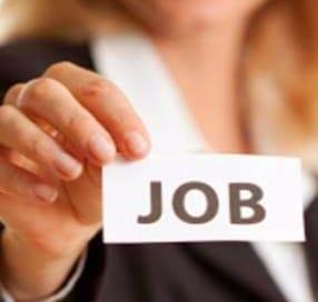 VIDEO | Locuri de muncă vacante în județul Maramureș