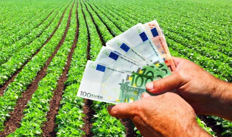 VIDEO | 100 de milioane de euro pentru instalarea tinerilor fermieri