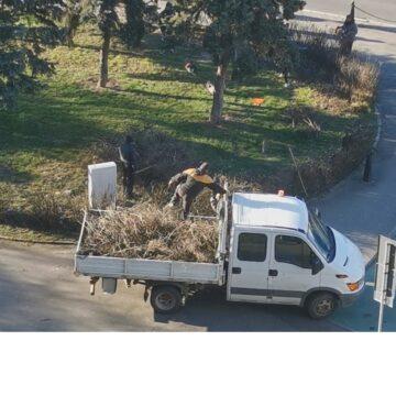 VIDEO | În municipiul Baia Mare a început marea curățenie de primăvară
