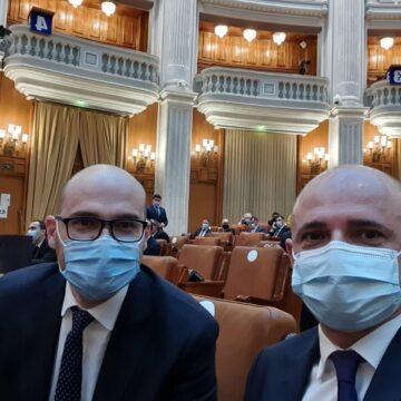Deputații liberali Călin Bota și Florin Alexe l-au interpelat pe ministrul Economiei pe tema ecologizării perimetrelor miniere închise din Maramureș