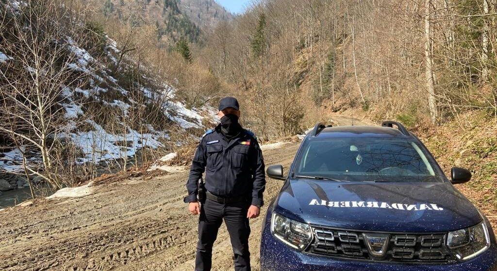 VIDEO | 171 DE STEJARI PENTRU ROMÂNIA: Inspectoratul de Jandarmi Judeţean Maramureş organizează o activitate de plantare puieți