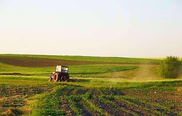 VIDEO   În perioada 10 mai – 31 iulie 2021 se va desfăsura Recensământul Agricol