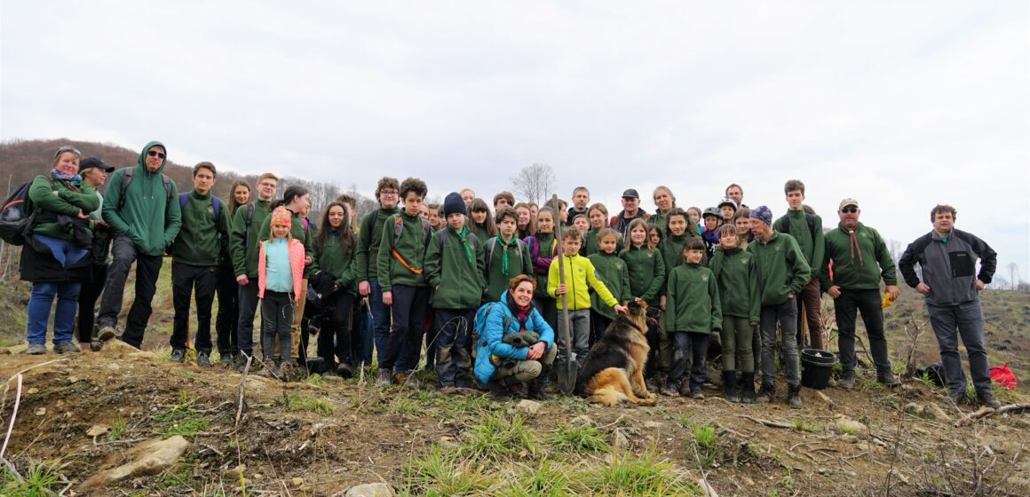 FOTO  Echipa de cercetasi Teleki Sándor a plantat 500 de puieți pe un hectar de teren în Valea Usturoiului