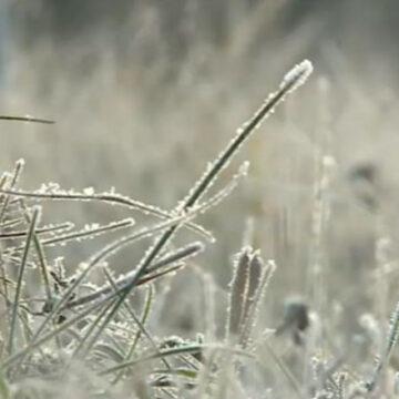 VIDEO | După câteva zile de vreme caldă, temperaturile vor scădea