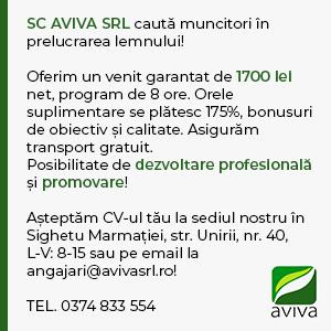aviva3