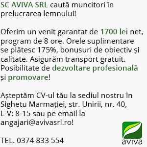 aviva4