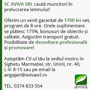 aviva5