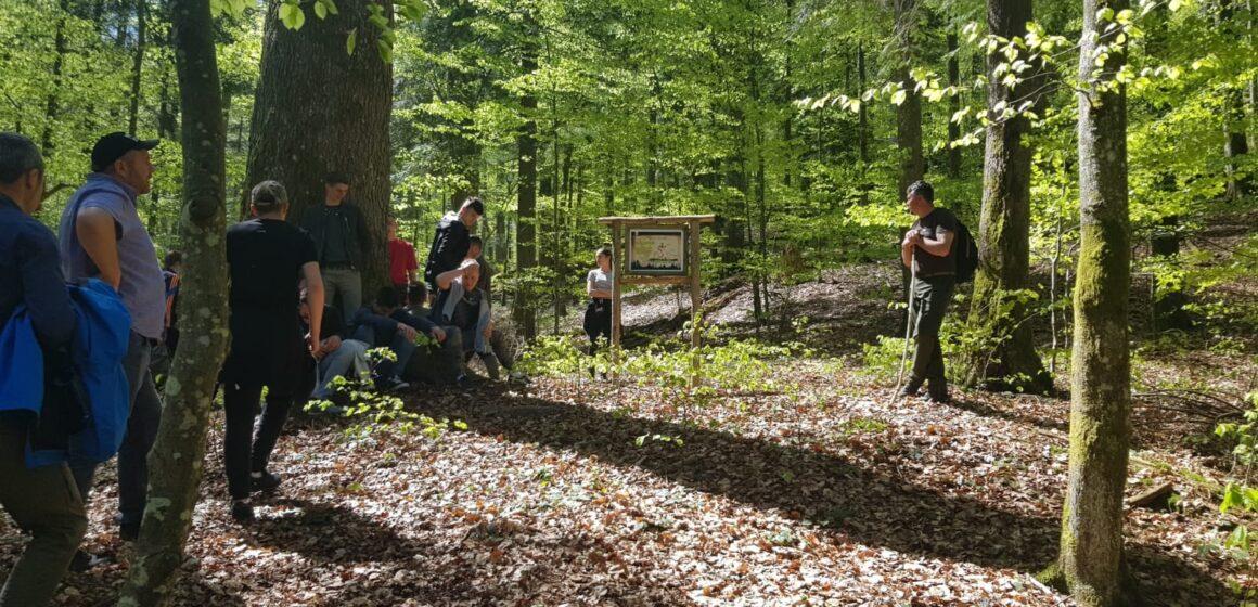 VIDEO   Absolvenți ai Liceului Tehnologic Forestier Sighet, în vizită în pădurea virgină de la Strâmbu Băiuț