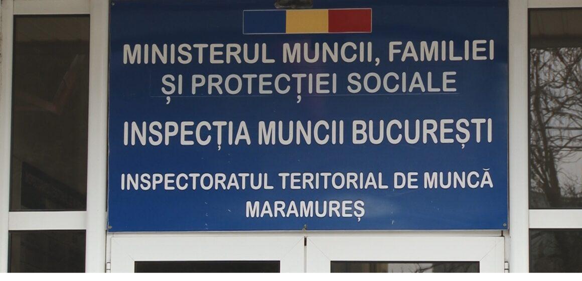 VIDEO | Pentru a preveni accidentele de muncă în exploatările forestiere, ITM Maramureș a încheiat un protocol de colaborare cu Direcția Silvică Maramureș