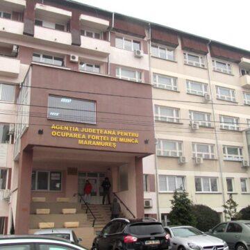 Cei mai mulți șomeri înregistrați la AJOFM Maramureș provin din câmpul muncii