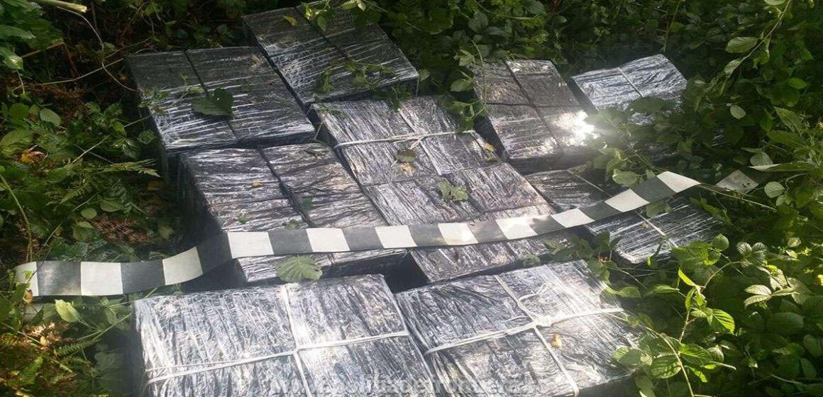 Țigări ascunse în vegetație pe direcția localității Lunca la Tisa