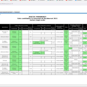 Au fost afișate rezultatele la examenele de Bacalaureat sesiunea august înainte de contestații