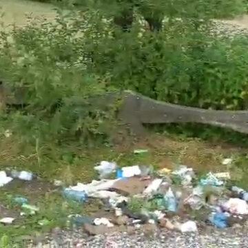 Video   Un popas cu o priveliște care lasă de dorit în Bârsana